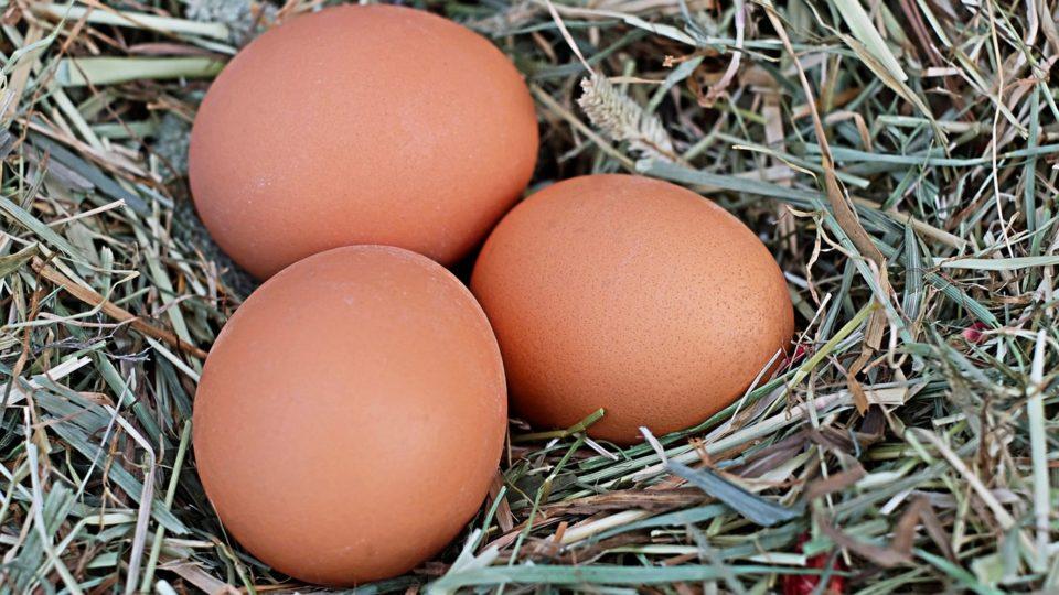 egg-1175620_1280