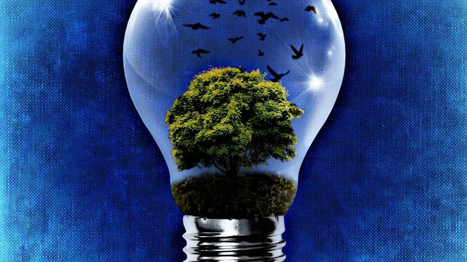 biogas energia