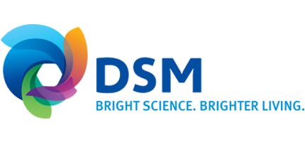 loghi-collaborazioni-DSM