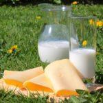 qualità del latte-latte e formaggio