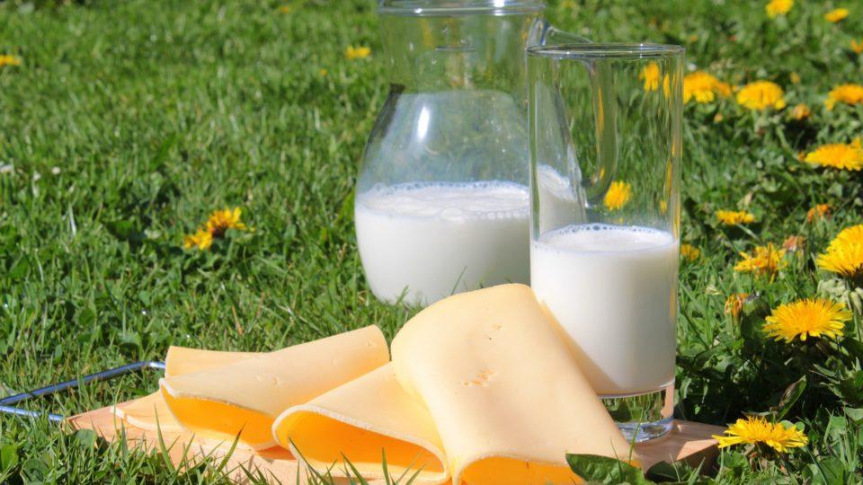 latte formaggio