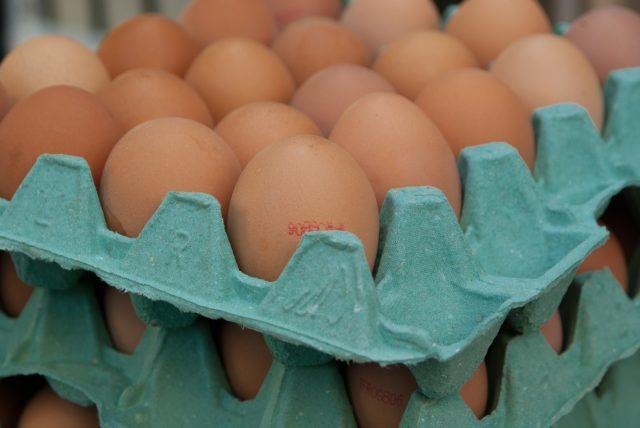 uova contaminate da firproni