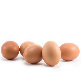senza antibiotici e insetticidi-uova
