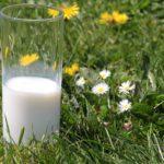 milk-1377569_1920