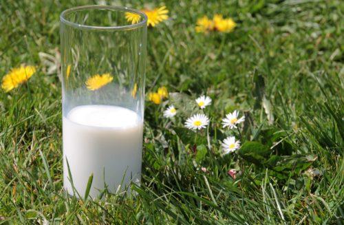 situazione mercato latte-bicchiere nel verde