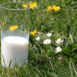 latte pascolo