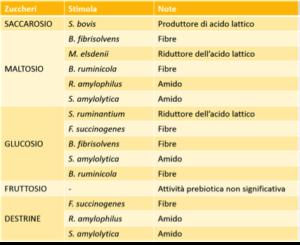 tabella transizione 5