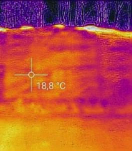 temperatura foraggi 2