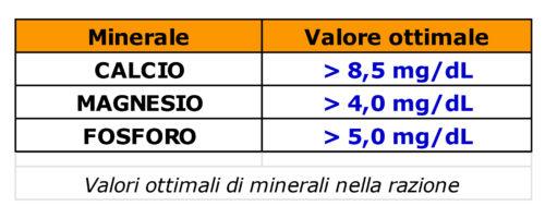 Valori ottimali minerali nella razione