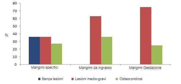il-consumo-di-mangimi-specifici-per-scrofette-riduce-la-prevalenza-delle-zoppie_97375