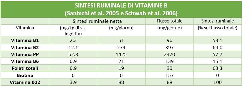 sintesi ruminale di vitamine B