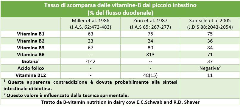 tasso di scomparsa delle vitamine B