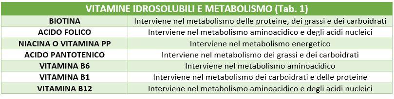 vitamine idrosolubili e metabolismo