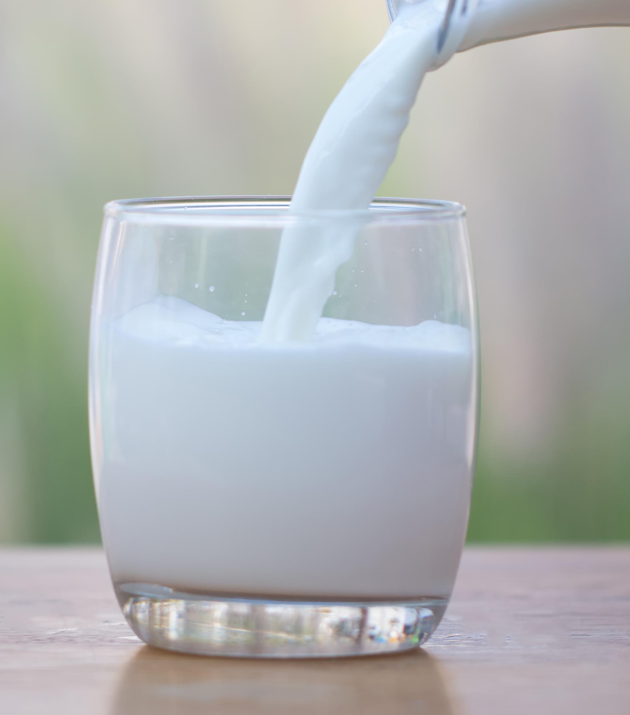 grasso del latte