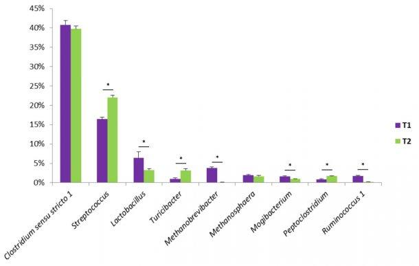 alcuni-generi-batterici-trovati-nelle-feci-suine_128889