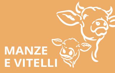 prodotti per manze e vitelli