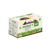 MICOSAT F UNO - Inoculation of mycorrhizal fungi for the prevention and growth of crops